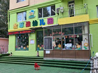 金苹果双语艺术幼儿园(爱民街)