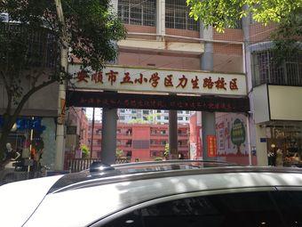 安顺市五小学(区力生路校区)