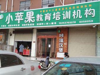 小苹果教育培训机构(泰山路店)