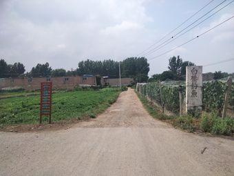 开封白楼农庄生态垂钓园