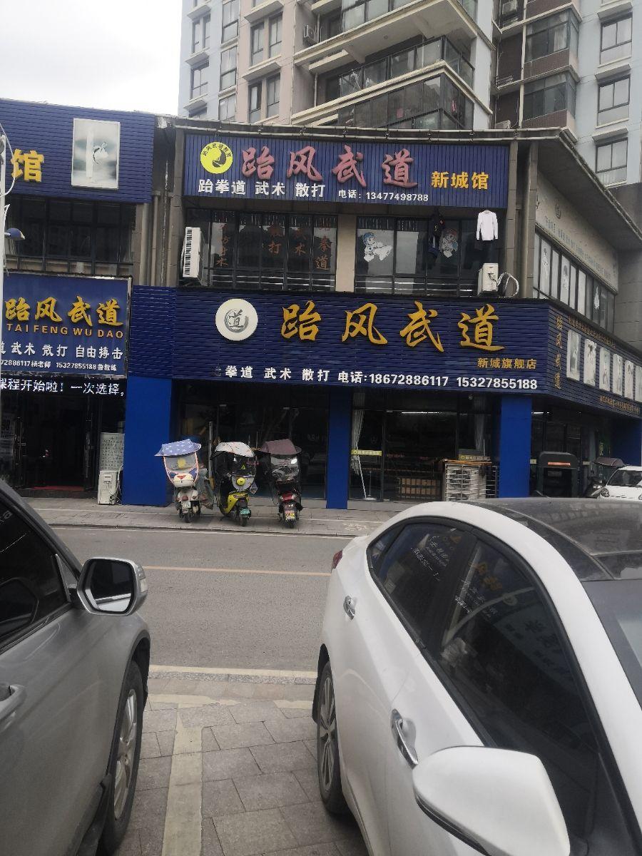 跆风武道(新城旗舰店)