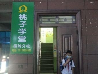 桃子学堂(秦岭分校)