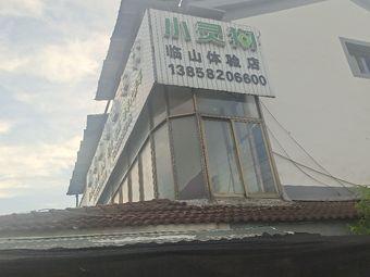 小灵狗(临山体验店)