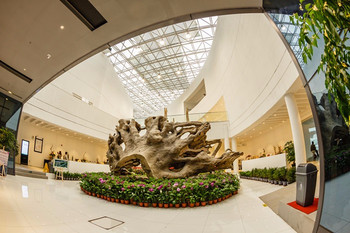 【上海大学】上海木文化博物馆门票家庭票2大1小-美团
