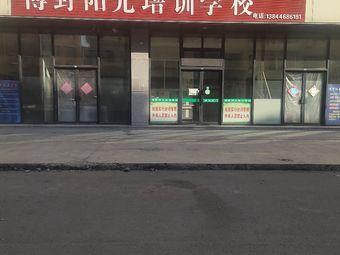 博野阳光培训学校