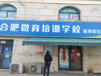 合肥微育培训学校(翡翠校区)