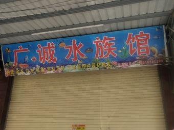 广诚水族馆
