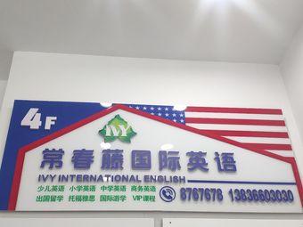 常春藤国际英语