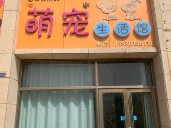 岩松妈妈的萌宠生活馆
