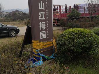 骊山红梅园