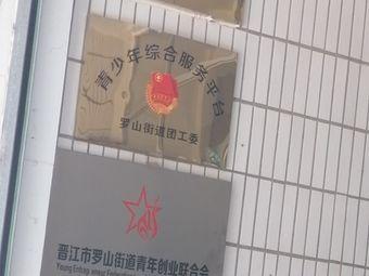 青少年综合服务平台罗山街道团工委