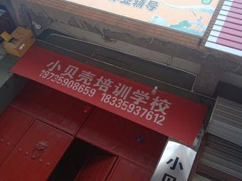 小贝壳培训学校