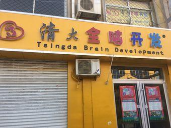 清大全脑开发