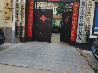北京大华教育(漯河总招办)