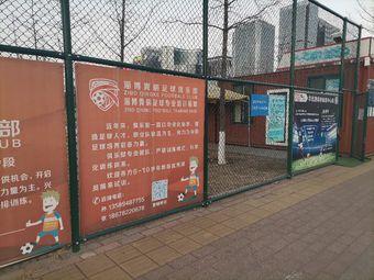 淄博青蝌足球俱乐部