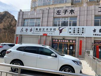 左子木舞蹈艺术学校