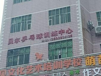 贝尔乒乓球训练中心