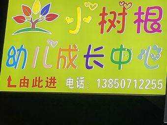 小树根幼儿成长中心(江头店)