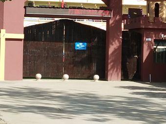 春蕾幼儿园(灵宝市动物卫生监督所焦村分所东北)