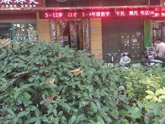 小新星教育培训学校(五一路校区)