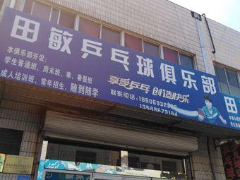 田敏乒乓球俱乐部