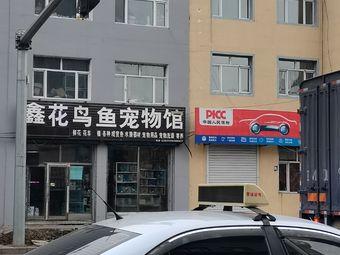 鑫花鸟鱼宠物馆