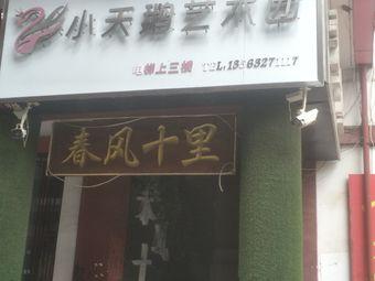 小天鹅艺术团(龙泉广场校区)