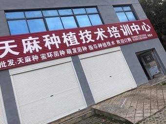 天麻种植技术培训中心