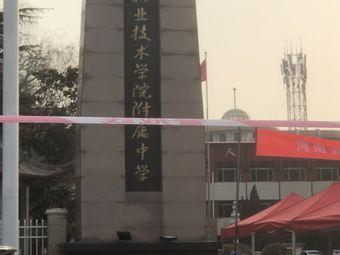 濮阳职业技术学院附属中学
