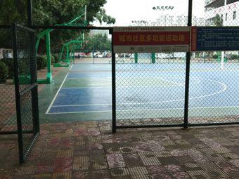 体育公园篮球场