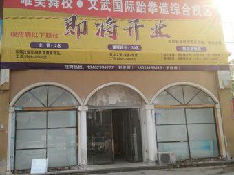 唯美舞校·文武国际跆拳道综合校区