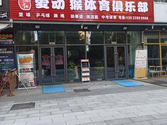中国红爱动猴体育俱乐部