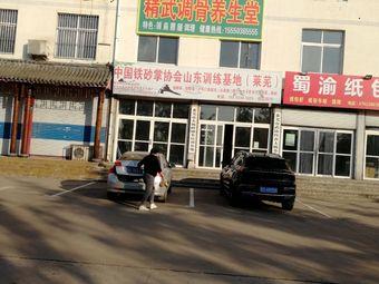 莱芜中国铁砂掌协会山东训练基地