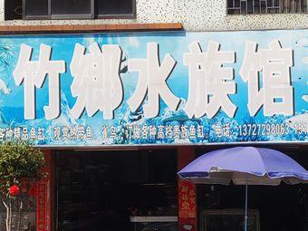 竹鄉水族馆