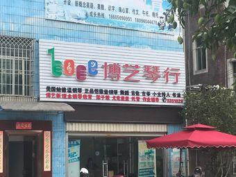 博艺琴行(武平店)