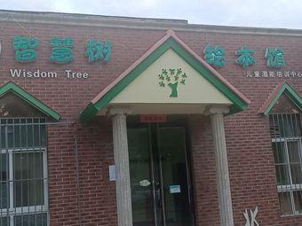智慧树绘本馆