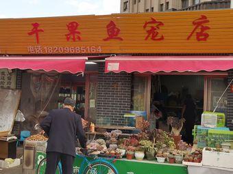 干果鱼宠店