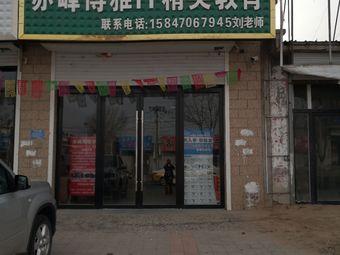 赤峰博雅IT精英教育