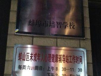 蚌埠市培智学校