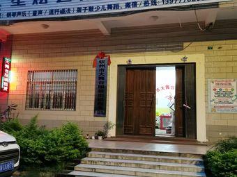 星炫艺术培训中心