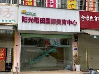 阳光稻田国际美育中心