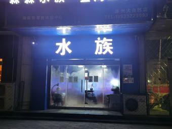 金海王水族(涿州大自然店)
