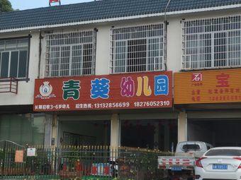 青葵幼儿园