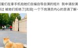 """李嫣自制小短片,李亚鹏想参演却被拒绝,自嘲是""""下岗演员"""""""