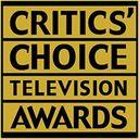 美国评论家选择电视奖
