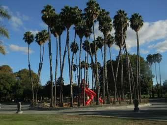 帕爾馬斯公園