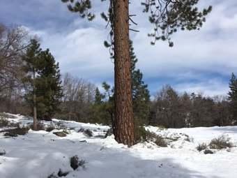 Rim Nordic Ski Area
