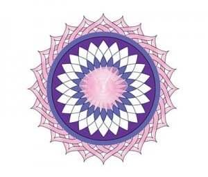 Rose Lotus Healing