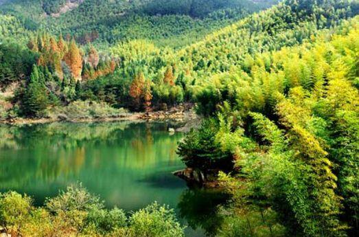 黄柏塬原生态风景区