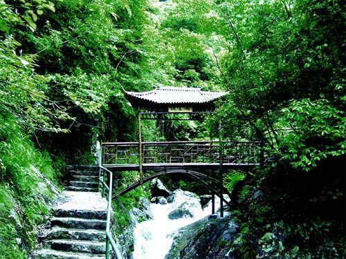 野鹤湫风景区
